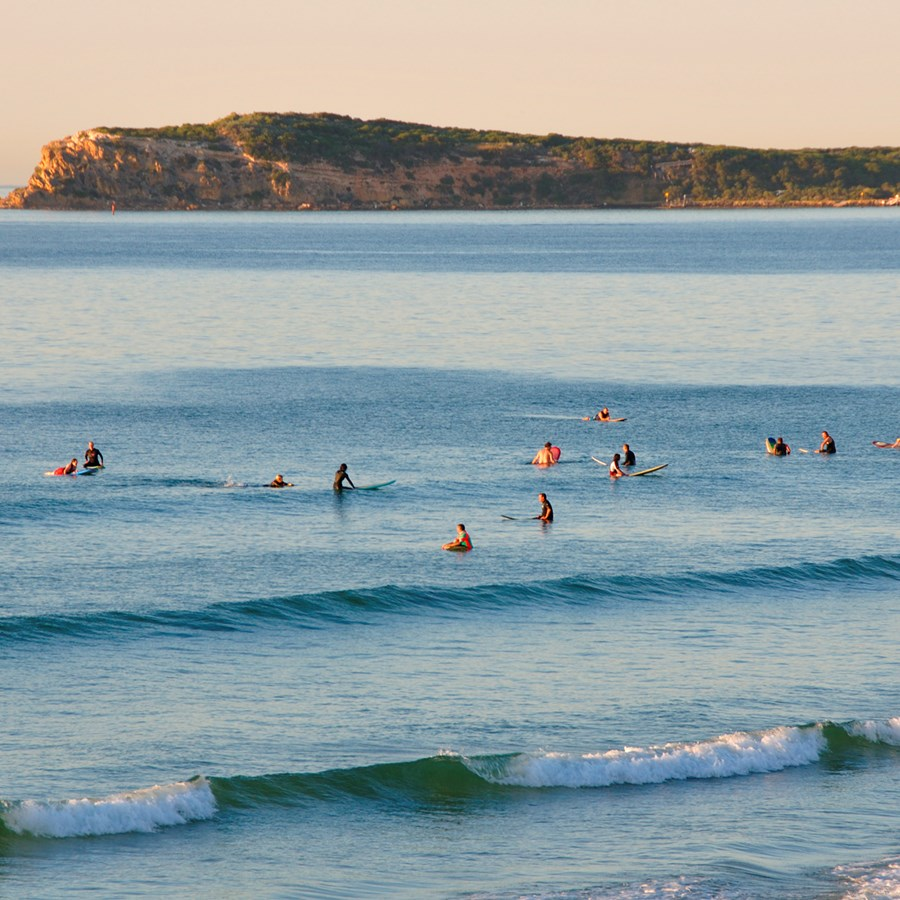 The Perfect Place to Learn To Surf: Ocean Grove Main Beach