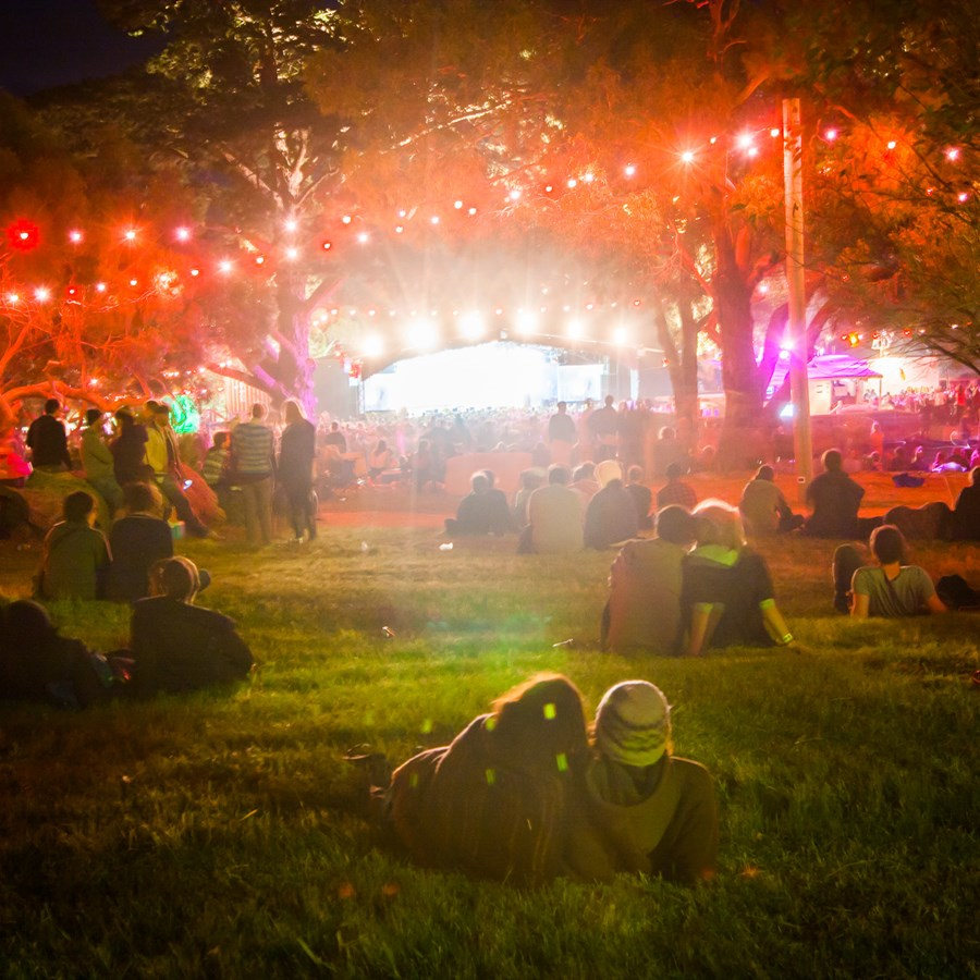 5 Things That Go Down At The Meredith Music Festival