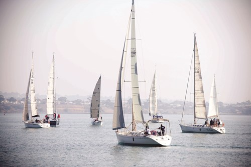 Yachts Festival of Sails Geelong