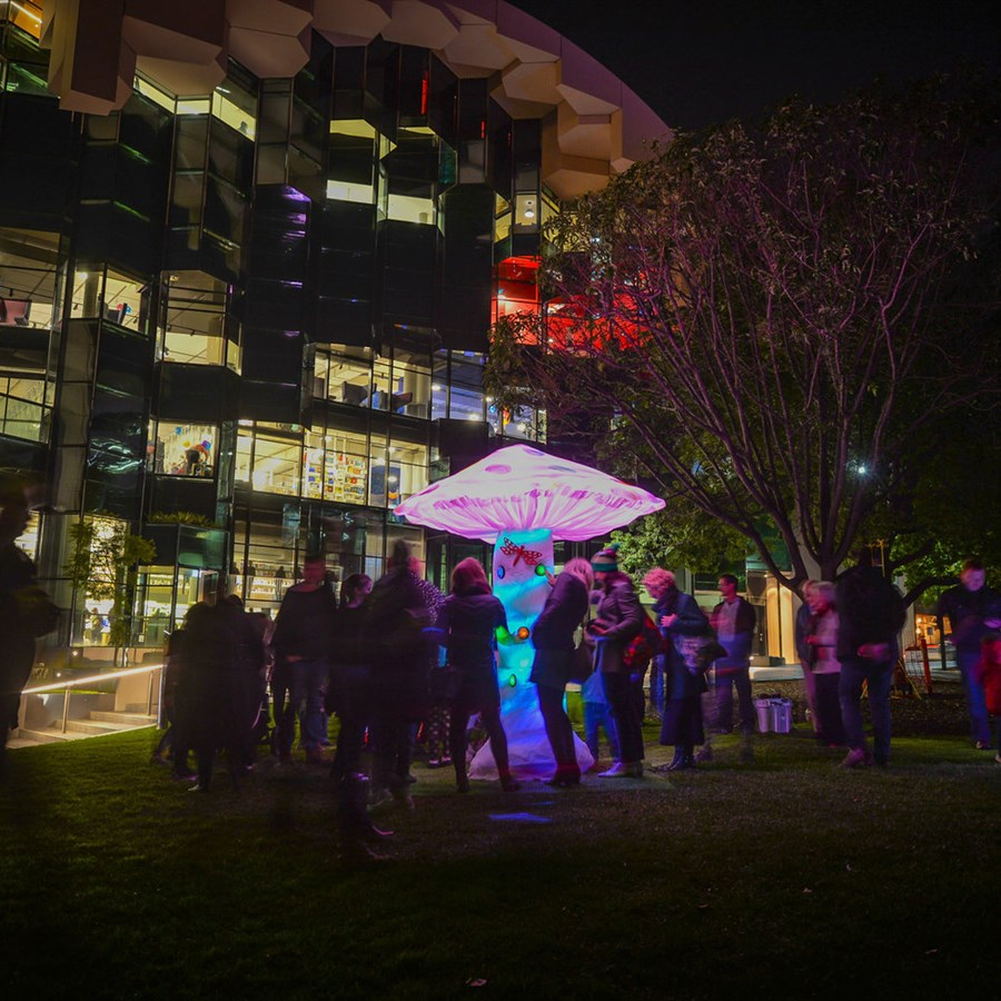Plenty of Arts in These Parts - Mountain to Mouth and Geelong After Dark
